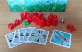 Jeder Spieler erhält zu Beginn 14 Stockwerke, 2 Dächer, einen Park, 10 Antennen, 5 Planungskarten und eine Wolkenkratzerkarte